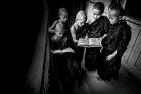 Young Monks II